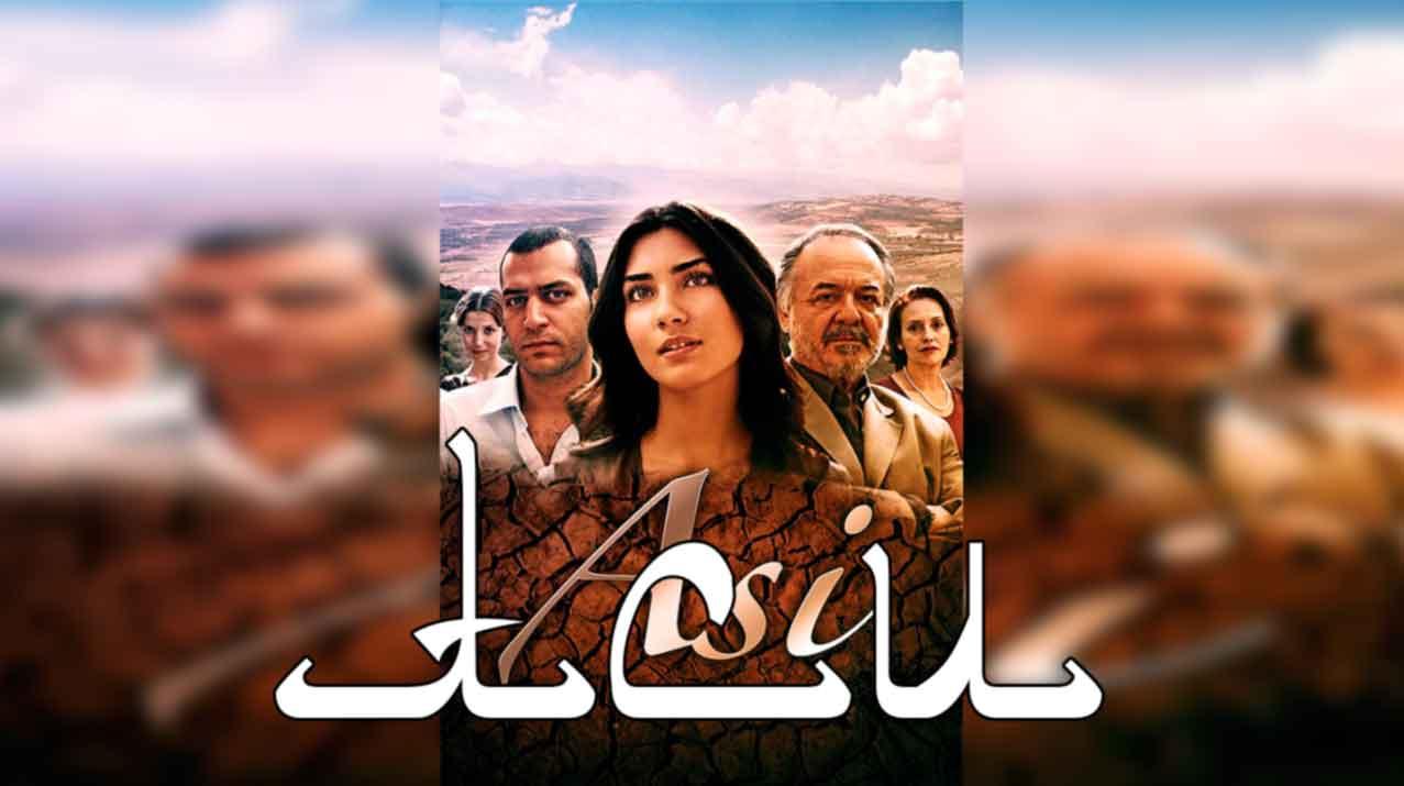Аси турецкий сериал