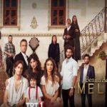 Меня зовут Мелек / Benim Adim Melek 2019